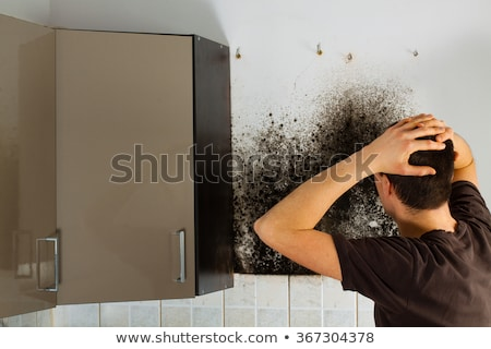 Shocked Man Looking At Mold On Wall Stock photo © AndreyPopov