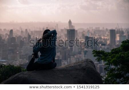 ativista · ioga · apresentações · exercer - foto stock © solarseven