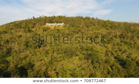 Aerial view on the coniferous forest in the mountains in winter Stock photo © vlad_star