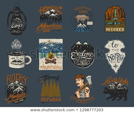 Cor vintage lenhador emblema carpinteiro cartaz Foto stock © netkov1