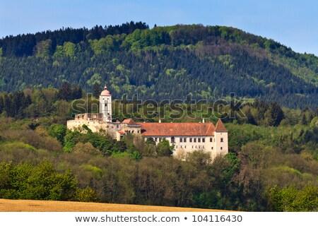 Castillo Austria vista forestales verano campo Foto stock © borisb17