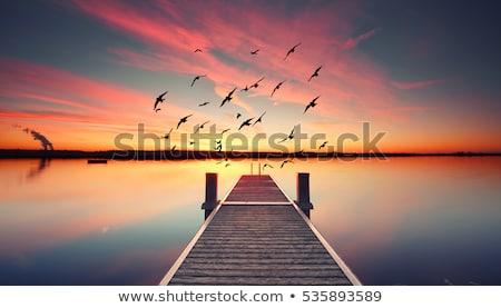 Pier On Sunrise Horizon  Stock photo © albund