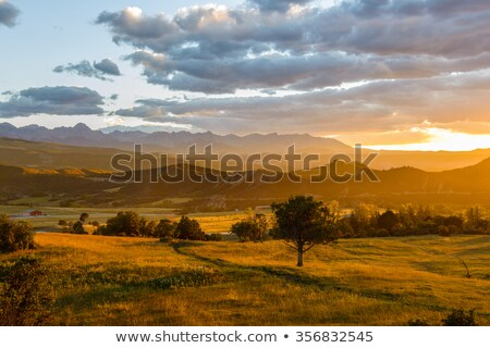 Rugged Ridge in the Mountain West Stock photo © wildnerdpix