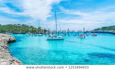 Mooie west kangoeroe eiland strand wolken Stockfoto © kwest