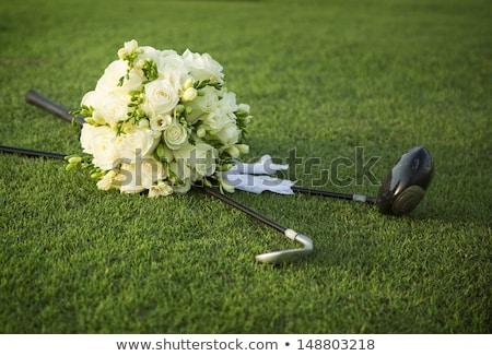 Wedding golf di recente accessori donne Foto d'archivio © val_th