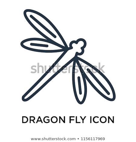 Сток-фото: икона · дракон · лет · спать · насекомое · крыло