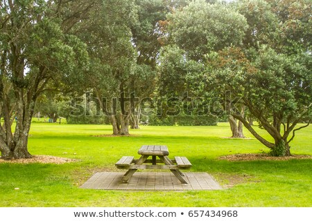 Place For Picnic Stock photo © cosma