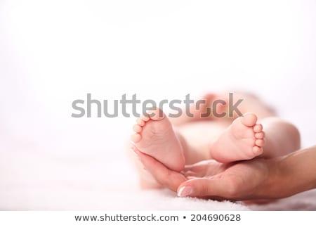 newborn baby feet on female hands Stock photo © REDPIXEL