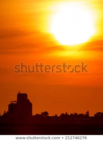 Sunset Sillouette with Grain Elevator Stock photo © pictureguy