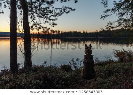 Stock fotó: Naplemente · mögött · tó · erdő · élénk · sziluett