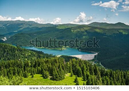 lac · montagnes · Roumanie · montagne · environnement · pin - photo stock © igabriela