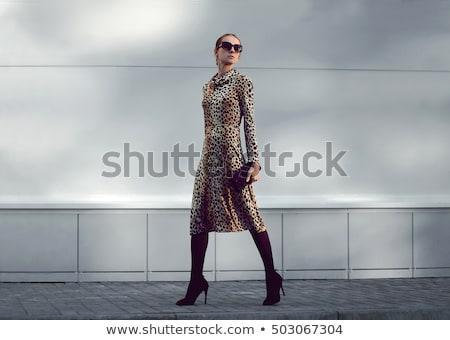 Nő leopárd cipők fényes kép fehér Stock fotó © dolgachov