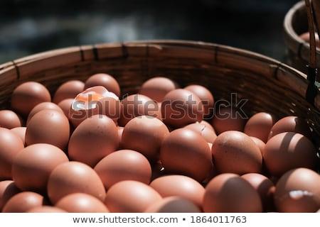 курица фермы внутри свежие продукции знак Сток-фото © Dashikka