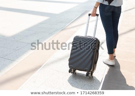 スーツケース · フラグ · 孤立した · 白 · 3dのレンダリング · 広場 - ストックフォト © koufax73