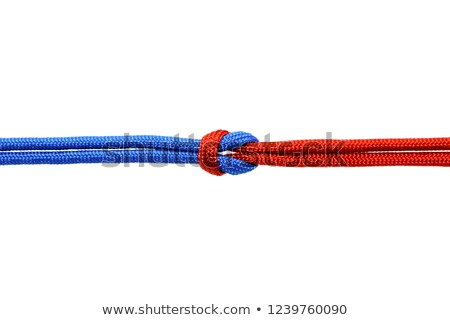 Rope with knot background texture Stock photo © art9858