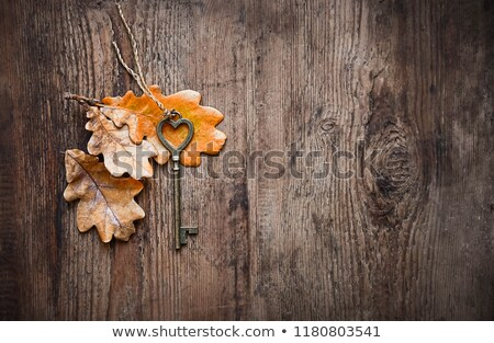 mysterious key with autumn leaves Stock photo © blackmoon979