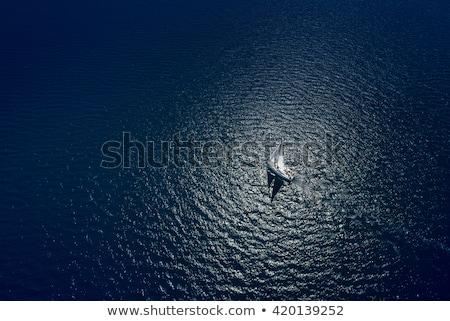 yalnız · tekne · su · yaz · okyanus · uzay - stok fotoğraf © galitskaya