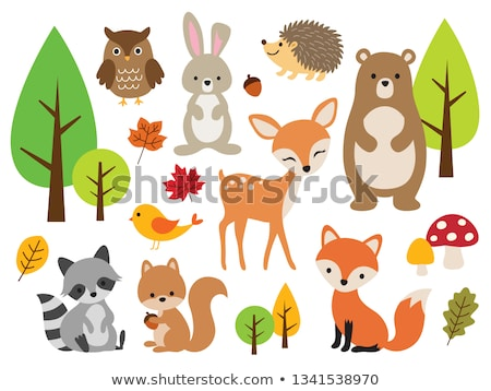 Stock photo: Wild animals in the forest