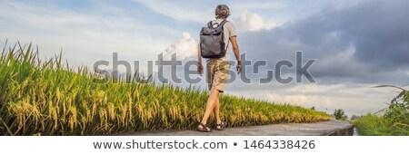 Masculino turista mochila arrozal homem montanha Foto stock © galitskaya