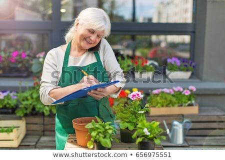 Senior woman working in flower garden Stock photo © boggy