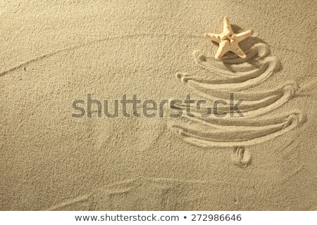 The inscription Merry Christmas on the beach in the sand and beach slippers Stock photo © galitskaya