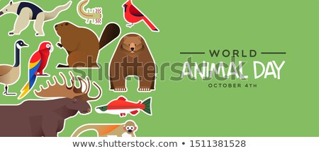 World animal day banner of wild jungle anteater Stock photo © cienpies