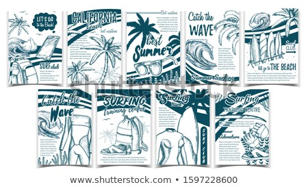 Wetsuits, Ocean Wave And Seaweed Set Banner Vector Stock photo © pikepicture