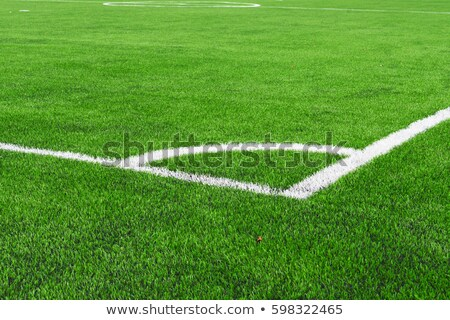 Football field corner with white marks Stock photo © boggy