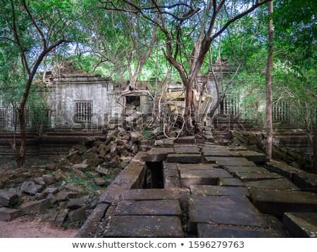 elefántok · hinduizmus · templom · épület · művészet · kő - stock fotó © raywoo