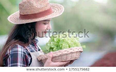 Closeup portrait of young caucasian woman with straw basket of f stock photo © HASLOO