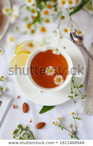Still-life with lemon-tea and white flowers Stock photo © boroda