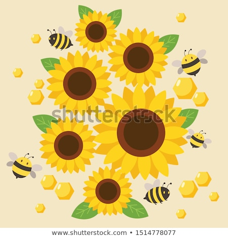 Stockfoto: Zonnebloem · honingbij · macro · hemel · zomer · veld