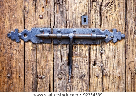 wrought iron lock old wooden door  Stock photo © inxti