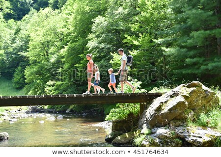 bridge in the forest in a mountain river stock photo © aetb