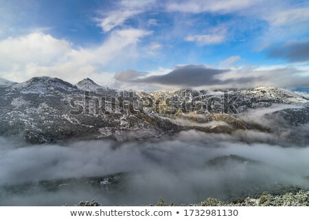 Невада холодно пейзаж лыжных курорта природы Сток-фото © jarp17