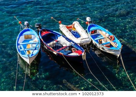 Three Boats Anchored near Riomaggiore in Cinque Terre, Italy Stock photo © anshar