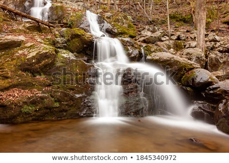 Long Exposure Water Flowing Down Stream Moss Covered Rocks Stock photo © cboswell