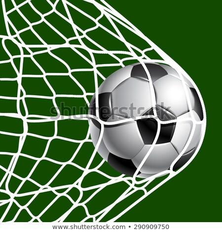 Balle grille porte herbe objectif cadre Photo stock © EFischen