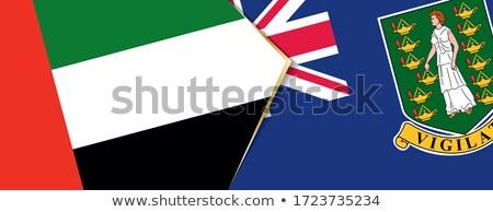 Объединенные Арабские Эмираты Виргинские о-ва британский флагами головоломки изолированный Сток-фото © Istanbul2009