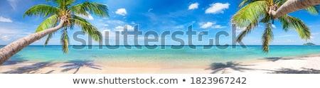tropical · oceano · praia · beleza · surpreendente · areia - foto stock © dmitroza