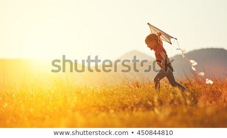 Meisjes Kite zonsondergang illustratie natuur silhouet Stockfoto © adrenalina