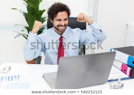 Retrato feliz empresário laptop trabalhar teia Foto stock © Minervastock
