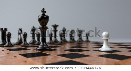 Chess Pawns David Versus Goliath Stock photo © limbi007