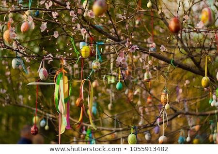 пасхальных яиц дерево bokeh подвесной мягкой Focus Сток-фото © artush