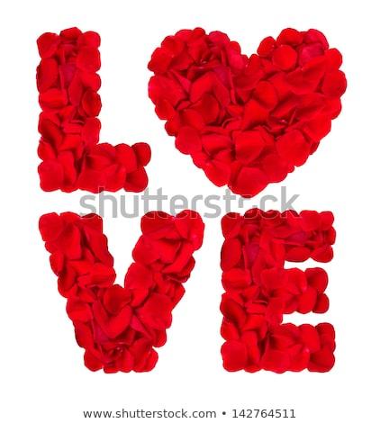 Wort Liebe rote Rose Blütenblätter romantischen Stock foto © dolgachov