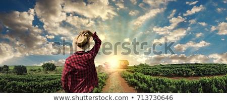 indonezyjski · rolnik · pracy · zielone · trawy - zdjęcia stock © photography33