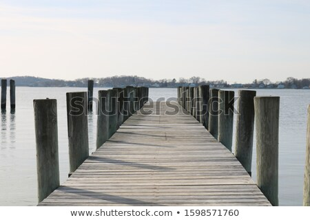 long pier into water Stock photo © clearviewstock
