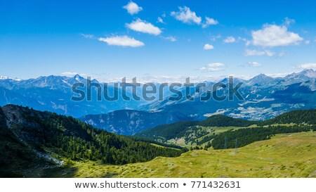 Hegyek kilátás magasság Örményország égbolt fa Stock fotó © ruzanna