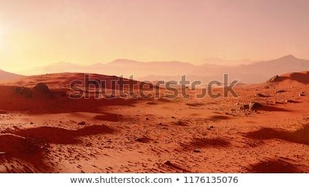 first man on mars planet   3d render stock photo © elenarts