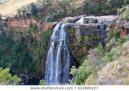 Лиссабон · водопада · реке · ЮАР · воды · трава - Сток-фото © intsys